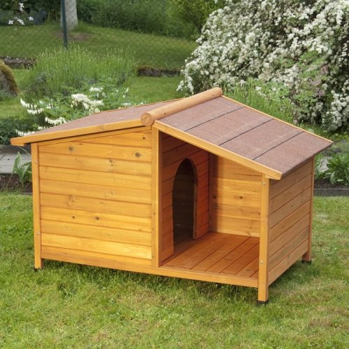 Special Dog Kennel with Patio Large