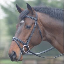 Cottage Craft Oxford Flash Bridle With Rubber Reins: Havana: Pony