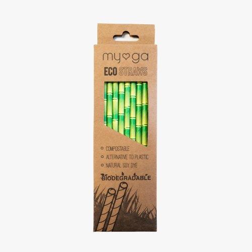 Eco Paper Straws