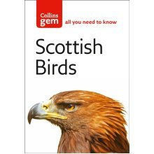 Scottish Birds (Collins Gem): The Quick and Easy Spotter's Guide (Paperback)