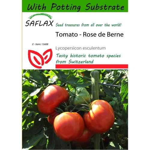 Saflax  - Tomato - Rose De Berne - Lycopersicon Esculentum - 10 Seeds - with Potting Substrate for Better Cultivation