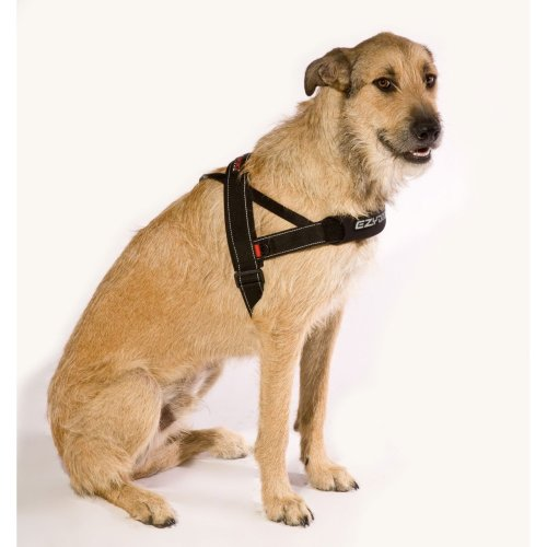 EzyDog Quick Fit Harness Black M