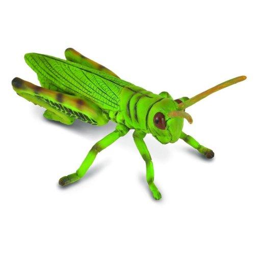 CollectA Grasshopper