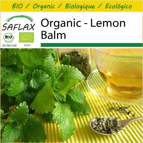 SAFLAX Potting Set - Organic - Lemon Balm - 1000 certified organic seeds  - Melissa