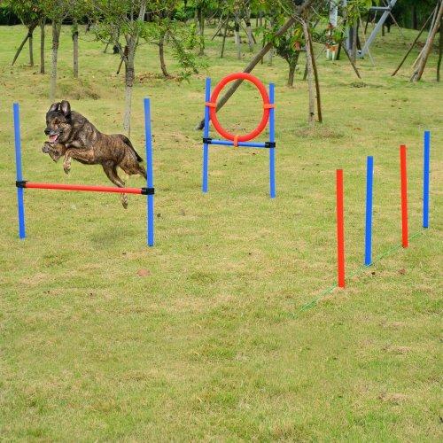 PawHut Dog Training Pole, Hoop & Hurdle | Dog Agility Equipment