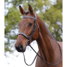 Kincade Hunt Cavesson Bridle: Brown: Pony
