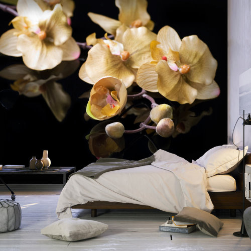 Wallpaper - Orchids in ecru color