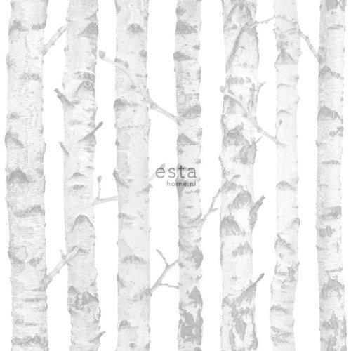HD non-woven wallpaper Birch trunks Silver and white