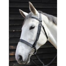 JHL Plain Cavesson Bridle: Brown: Pony