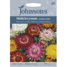 Johnsons Seeds - Pictorial Pack - Flower - Helichrysum Double Mixed - 500 Seeds