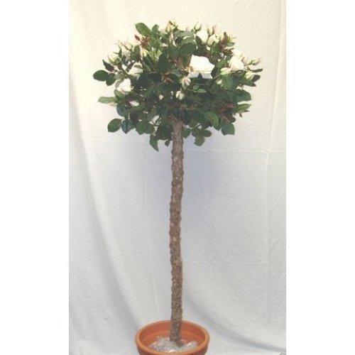 Artificial Silk Rose Lady Ball Tree