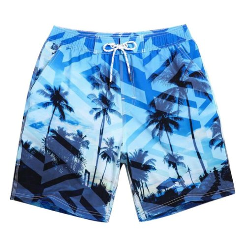 Beach Shorts Men's Quick-drying Pants Holiday Loose Swim Shorts,L Size,#04
