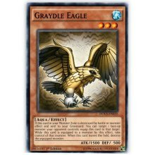 Yu-Gi-Oh! - Graydle Eagle (DOCS-EN035) - Dimension of Chaos - 1st Edition - Common