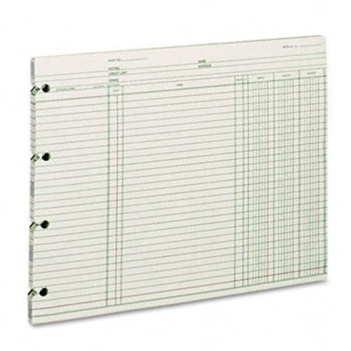 Wilson Jones GN2D Accounting  9-1/4 x 11-7/8  100 Loose Sheets Pack