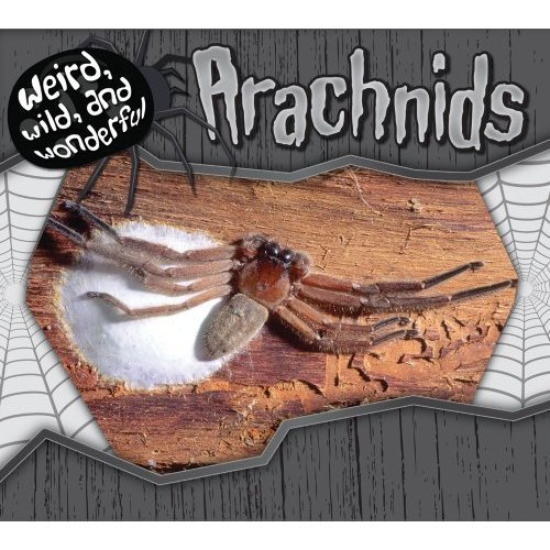 Arachnids (Weird, Wild, and Wonderful)
