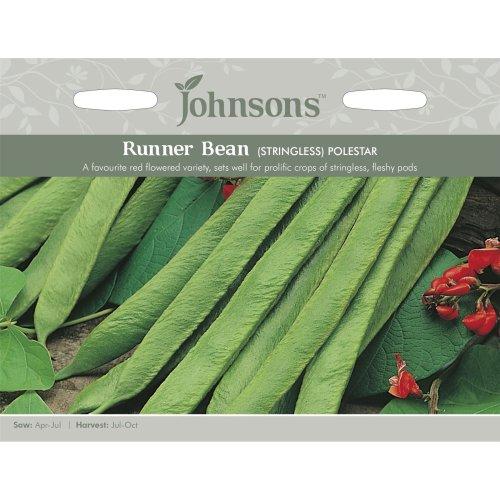 Johnsons Seeds - Pictorial Pack - Vegetable - Runner Bean Polestar (Stringless) - 50 Seeds