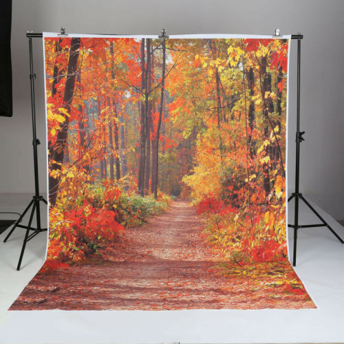 5x7ft Autumn Fall Forest Vinyl Backdrop Photography Photo Studio Prop Background