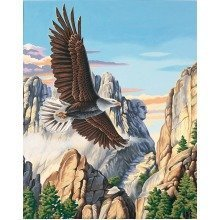 Dpw91301 - Paintsworks Paint by Numbers - Soaring Eagle